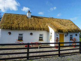 Fitzpatricks Cottage - East Ireland - 929821 - thumbnail photo 1