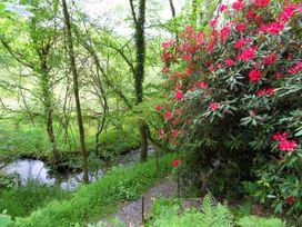 Red Kite - South Wales - 930697 - thumbnail photo 40
