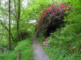 Kingfisher - South Wales - 930698 - thumbnail photo 30