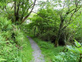 Kingfisher - South Wales - 930698 - thumbnail photo 31