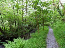 Kingfisher - South Wales - 930698 - thumbnail photo 32