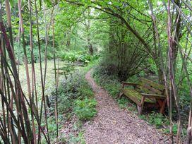 Kingfisher - South Wales - 930698 - thumbnail photo 34