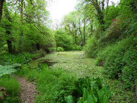 Kingfisher - South Wales - 930698 - thumbnail photo 35