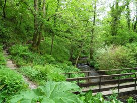 Kingfisher - South Wales - 930698 - thumbnail photo 36