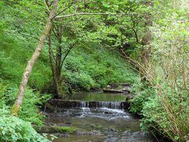 Kingfisher - South Wales - 930698 - thumbnail photo 37