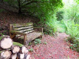 Kingfisher - South Wales - 930698 - thumbnail photo 39
