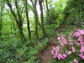 Kingfisher - South Wales - 930698 - thumbnail photo 41