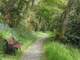 Kingfisher - South Wales - 930698 - thumbnail photo 25