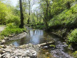 Kingfisher - South Wales - 930698 - thumbnail photo 28