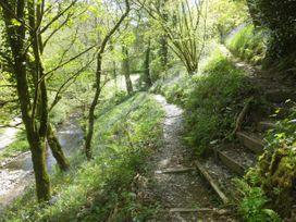 Kingfisher - South Wales - 930698 - thumbnail photo 29