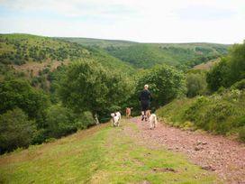 Coleridge - Somerset & Wiltshire - 930747 - thumbnail photo 23