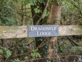 Dragonfly Lodge - Norfolk - 932371 - thumbnail photo 25