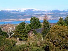 Pine Lodge - Scottish Highlands - 933067 - thumbnail photo 3