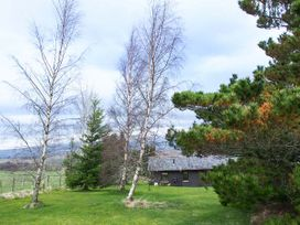 Pine Lodge - Scottish Highlands - 933067 - thumbnail photo 20