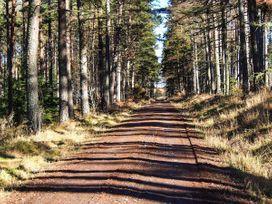 Pine Lodge - Scottish Highlands - 933067 - thumbnail photo 22