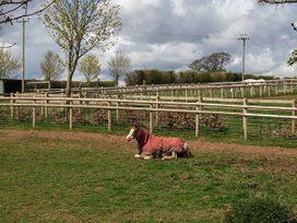 Teal Barn - Herefordshire - 933878 - thumbnail photo 14