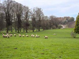 Walcot Farm - Shropshire - 934254 - thumbnail photo 15