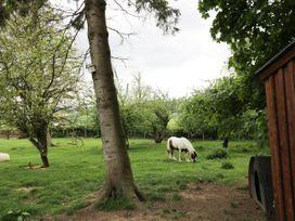 The Stable, Sedbury Park Farm - Yorkshire Dales - 934811 - thumbnail photo 14