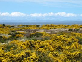 Seaside Haven - Scottish Lowlands - 935016 - thumbnail photo 8
