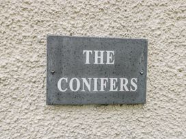 The Conifers - Yorkshire Dales - 935226 - thumbnail photo 2