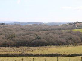 Foxes - Cornwall - 936311 - thumbnail photo 19
