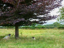 The Granary - Whitby & North Yorkshire - 936454 - thumbnail photo 16