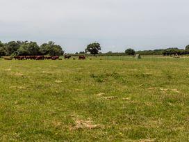 The Farm House - Somerset & Wiltshire - 937996 - thumbnail photo 27