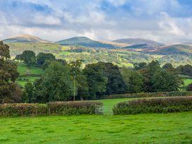 Waedog Bach - North Wales - 938197 - thumbnail photo 15