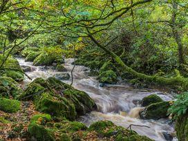 Waedog Bach - North Wales - 938197 - thumbnail photo 17