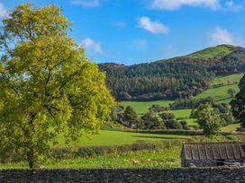 Waedog Bach - North Wales - 938197 - thumbnail photo 19