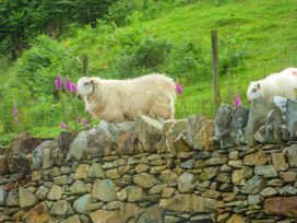 Tyn Llwyn - North Wales - 938914 - thumbnail photo 12