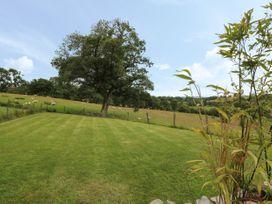 Pheasant Wood - Mid Wales - 939035 - thumbnail photo 21