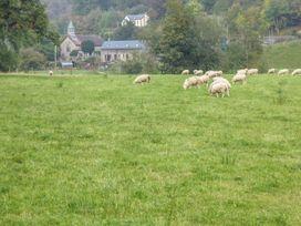 Tynddol Barn - Mid Wales - 940203 - thumbnail photo 33