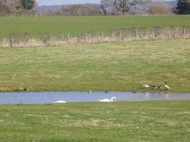 The Stables - Shropshire - 940349 - thumbnail photo 21