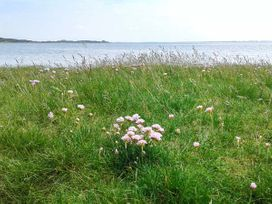 Shoreside - Scottish Lowlands - 940547 - thumbnail photo 14
