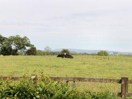 Woodlands - Yorkshire Dales - 941915 - thumbnail photo 15