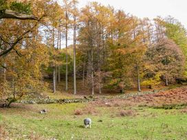 Yew - Woodland Cottages - Lake District - 942516 - thumbnail photo 20