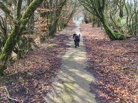 14 Beattock Park - Scottish Lowlands - 943418 - thumbnail photo 10