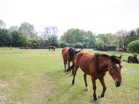 1 Bury Farm Cottage - South Coast England - 945151 - thumbnail photo 27