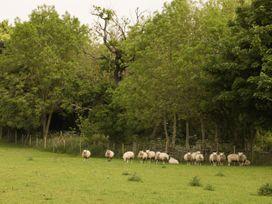 Just A Cottage, Newlands Farm - Peak District - 946824 - thumbnail photo 15