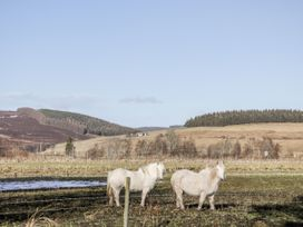 Strombos - Scottish Highlands - 946893 - thumbnail photo 18