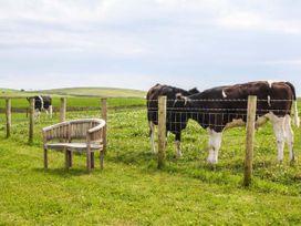 Corsewall Castle Farm Lodges - Scottish Lowlands - 947014 - thumbnail photo 29