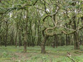 Flora's Barn - Somerset & Wiltshire - 947351 - thumbnail photo 43