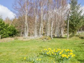 Larchgrove - Scottish Highlands - 950205 - thumbnail photo 24