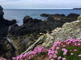Trearddur Views - Anglesey - 950827 - thumbnail photo 33