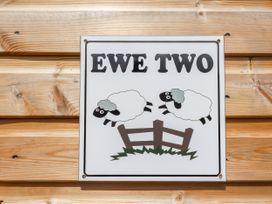Ewe Two - North Wales - 951606 - thumbnail photo 3