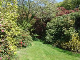 Pandia - Cornwall - 951897 - thumbnail photo 21