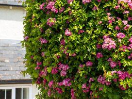 Glencoe Cottage - Cotswolds - 952573 - thumbnail photo 19