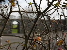 Hen House - Anglesey - 953572 - thumbnail photo 13