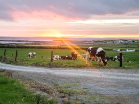 Flynn's Cottage - County Clare - 954385 - thumbnail photo 12